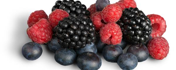 antioxidanty1