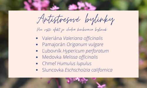 antistres-bylinky