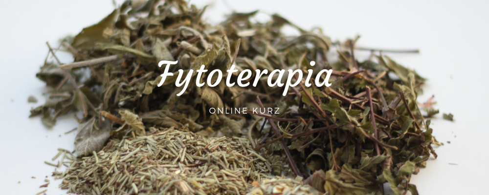 Fytoterapia