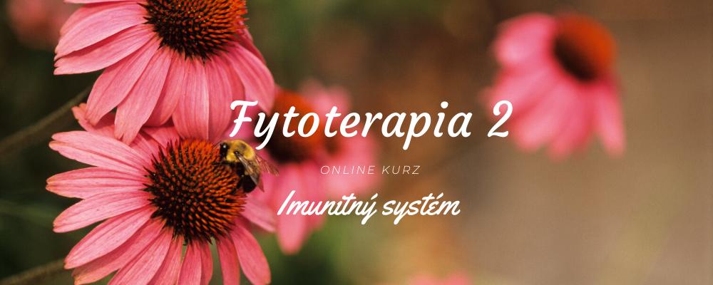 fytoterapia-imunitny-system